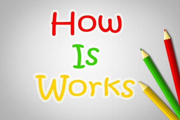 OBS how it works to study online